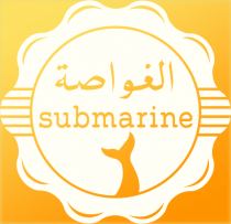 Radio Trasformatorio feature Radio Submarine from Cairo, tonight 17:00 GMT